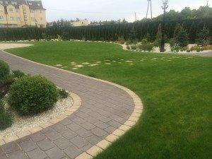 chodnik i przedept w trawniku