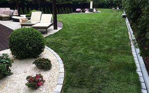 ogrod w stylu nowoczesnym